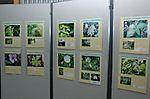 神奈川の自然「神奈川県の自然 いきものたちの写真展(第14回)」
