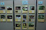 徳善寺の自然「神奈川県の自然 いきものたちの写真展(第14回)」
