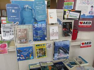 鶴見大学図書館第20回ミニ企画展「海」