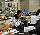 顕微鏡で水の中の生きものを観察